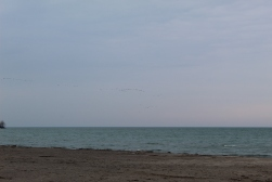 Cobourg Beach at Lake Ontario